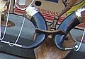 Rams horns (ყანწი) (A).jpg