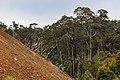 Ranau Sabah Mamut-Copper-Mine-01a.jpg