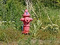 Red fire hydrant in Salem, Utah, May 16.jpg