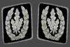 Reichsfuehrer-SS collar-1942-45.png