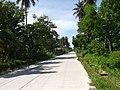 Renzo Village - panoramio (16).jpg