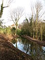 Restored Pond, Hackfall Woods - geograph.org.uk - 638601.jpg