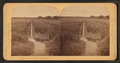 Rice field, South Carolina, from Robert N. Dennis collection of stereoscopic views.png