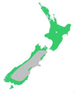 Rimu-natural-range.png
