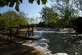 River Cherwell- weir at Parsons Pleasure (geograph 5379399).jpg