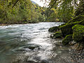 River Kokra (15173110457).jpg