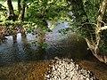 River Lew - geograph.org.uk - 422451.jpg