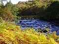 River Shin, Achany Glen - geograph.org.uk - 617063.jpg