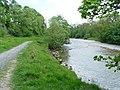 River Wharfe in Lower Grass Wood - geograph.org.uk - 824394.jpg