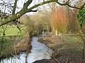 River Wylye - geograph.org.uk - 111090.jpg