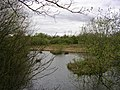 Rixton Clay Pits Nature Reserve - geograph.org.uk - 2742.jpg
