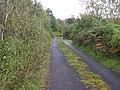 Road at Boihy - geograph.org.uk - 1505863.jpg