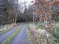 Road at Moneyduff - geograph.org.uk - 1118184.jpg