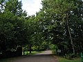 Road to Green Park Provincial Park (465591563).jpg