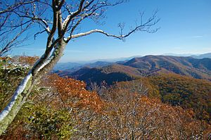 Rocky Fork State Park (Tennessee) - Image: Rocky Fork from Buzzard Rock