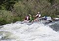 Rogue River (17419404658).jpg