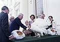 Rosalynn Carter and Amy Carter Pardoning the Turkey.jpg