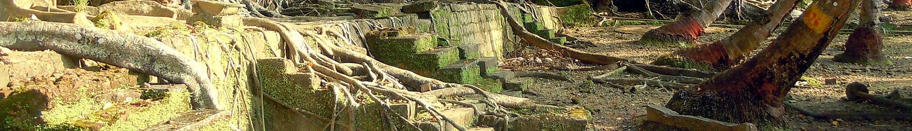 Ross Island banner Ruins.jpg