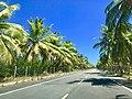 Roteiro - Alagoas.jpg