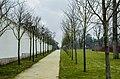 Royal Palace of Gödöllő, Park, 2013-03-10.jpg