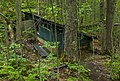 Ruined structure off Ranger's Trail on Poke-O-Moonshine Mountain.jpg