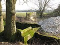 Ruins of Old Barn near Lashmar Wood - geograph.org.uk - 1703897.jpg