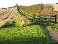 Rural driveway, near Thornton Watlass - geograph.org.uk - 274510.jpg