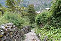 Rural path - Annapurna Circuit, Nepal - panoramio.jpg