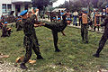 Russian paratroopers - martial arts demonstration.jpg