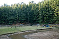 Sacred Dal Lake and Himalayan Cedars (2485587092).jpg