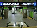 Saitama-Railway-Araijuku-station-platform.jpg