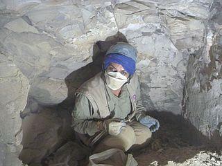 Pakistani egyptologist