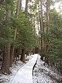 Salt Springs State Park (3284697646).jpg