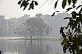 Santragachi Jheel - Howrah 2017-12-25 5675.JPG