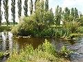 Savran River in Savran.jpg