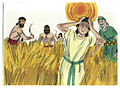 Second Book of Kings Chapter 4-8 (Bible Illustrations by Sweet Media).jpg