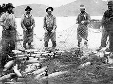 Шесть человек в комбинезонах, шляпах, ботинках и другой рабочей одежде тянут большую сеть, полную рыбы. Они стоят на мелководье большой реки. На противоположном берегу реки возвышаются округлые холмы.