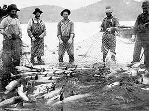 Fishermen catching salmon on the Columbia Rive...