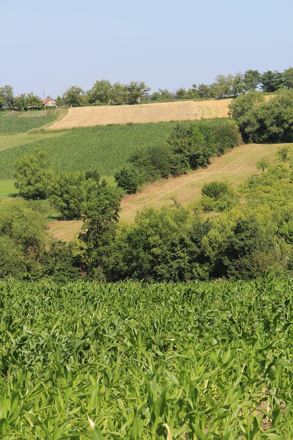Selo Klinci - opština Valjevo - zapadna Srbija - Panorama 27