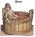 Senecas Tod.jpg
