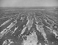 Seney National Wildlife Refuge - 1967 (5405011148).jpg