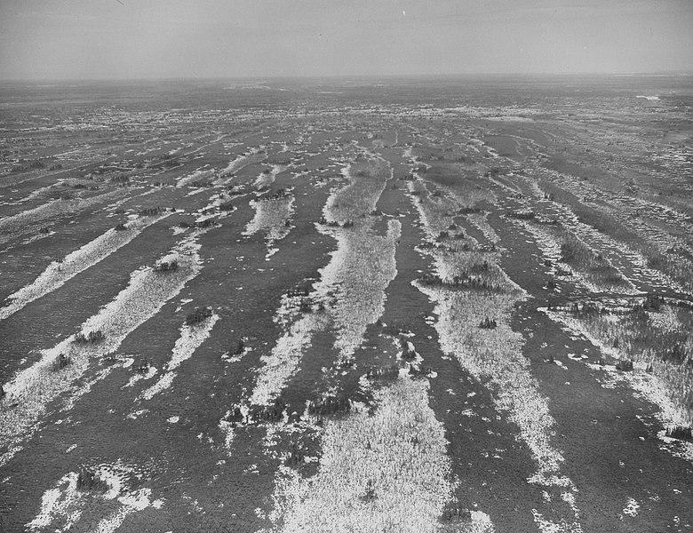 File:Seney National Wildlife Refuge - 1967 (5405011148).jpg