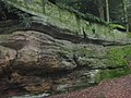 Sharon Conglomerate the Ledges July 2021 a.jpg