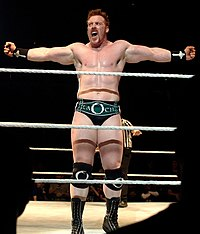 Der aktuelle WWE United States Champion Sheamus