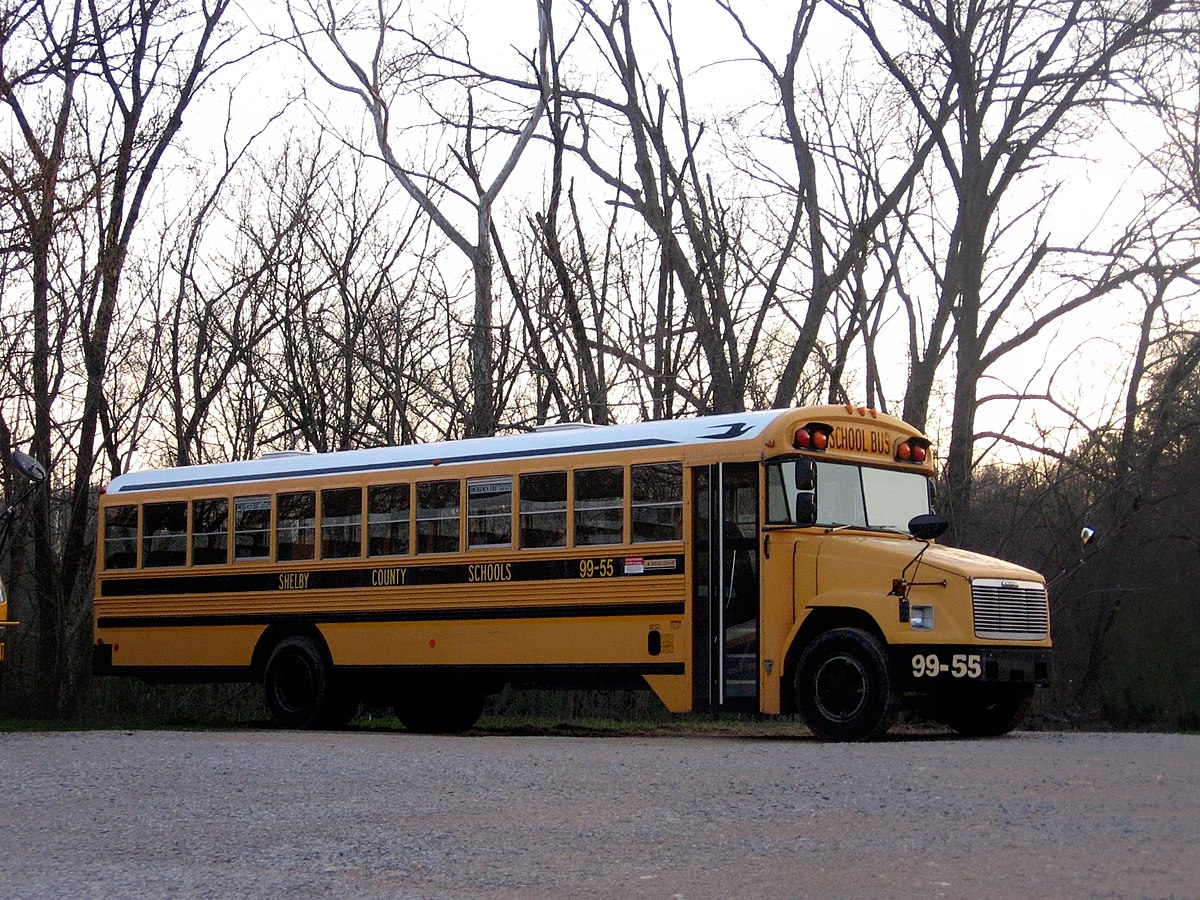 1200px Shelby_County_Bus_99 55 freightliner fs 65 wikipedia  at edmiracle.co