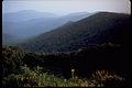 Shenandoah National Park SHEN4852.jpg