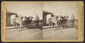 Sing Sing Prison. (Prison cart.), from Robert N. Dennis collection of stereoscopic views 2.png