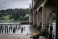 Siuslaw River Bridge-5.jpg