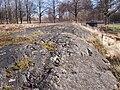 Skålgropshällen med ca 520 skålgropar i Pryssgården, Östra Eneby sn, Norrköping, den 4 mars 2008, bild 20.jpg