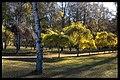 Skogskyrkogården - KMB - 16000300018391.jpg